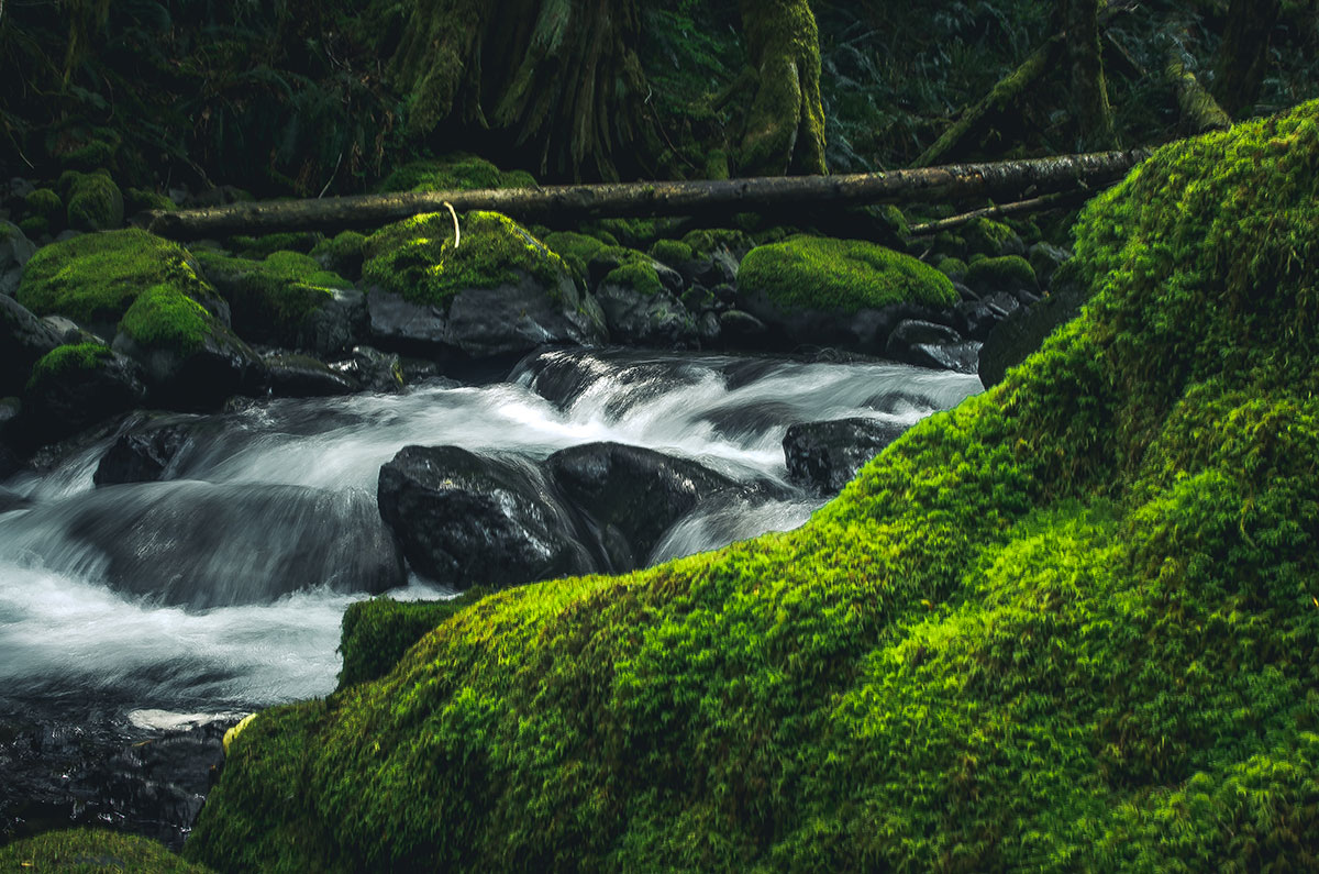 waterfalls alberni valley west coast Canada Vancouver Island