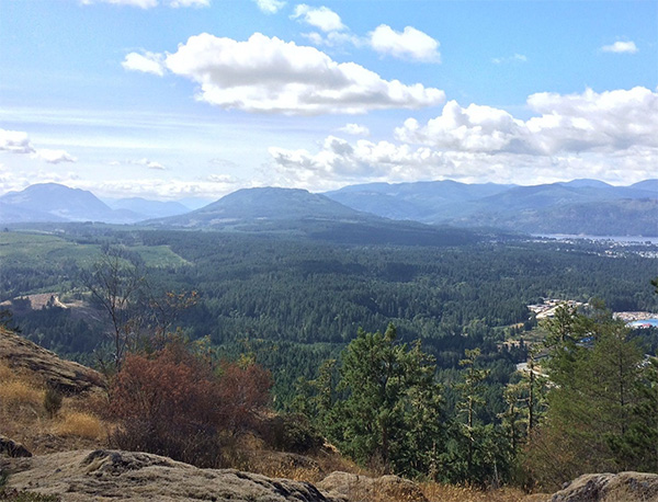 Numerous hiking trails to choose from in Port Alberni, offering spectacular views.